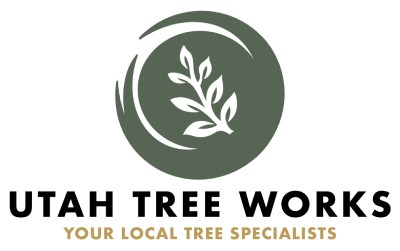 Utah Tree Works Professional Tree Service